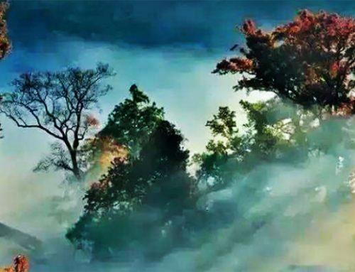 最罕见的58张中国风光照片,叹为观止!